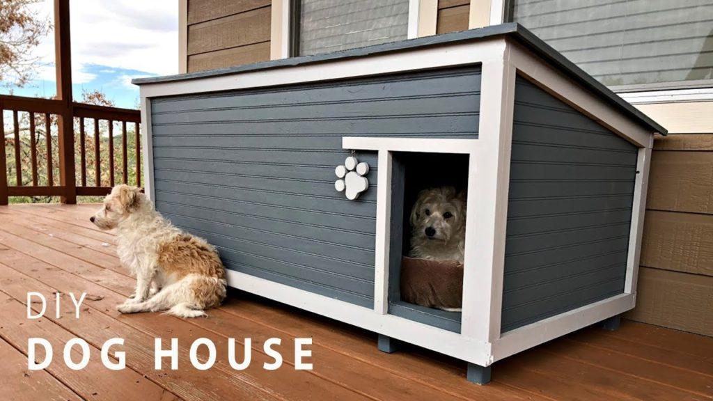 Expenses+for+Dog+House