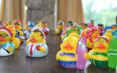 Navigation to Story: Rubber Ducks Lost At Sea