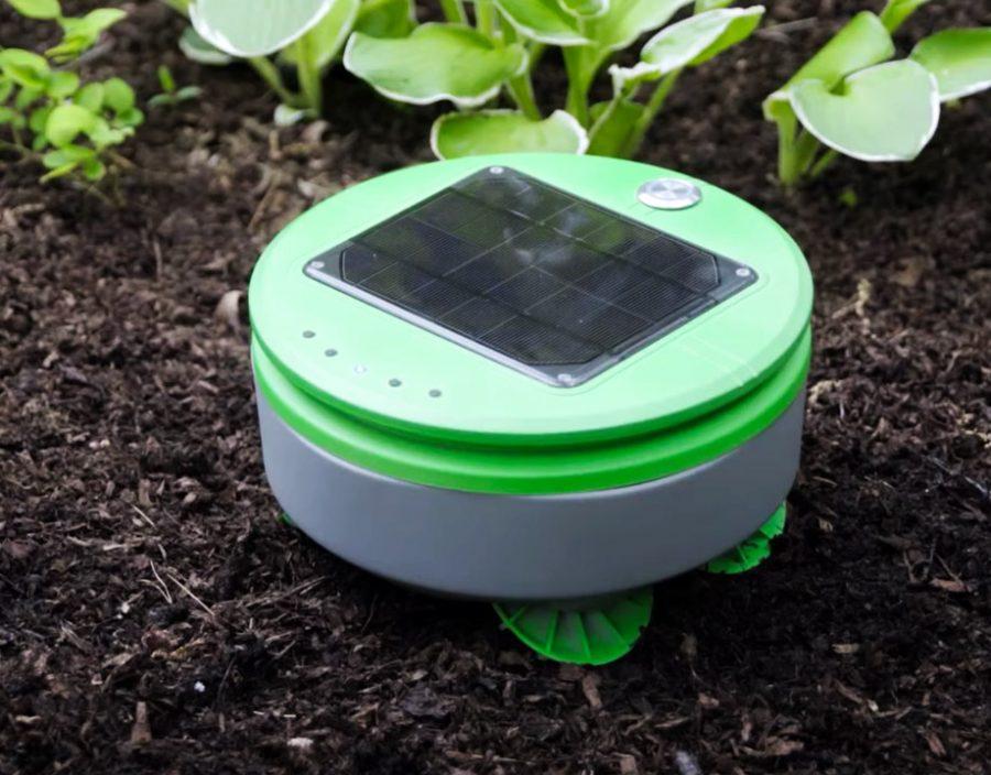 A Robot Garden Weeder