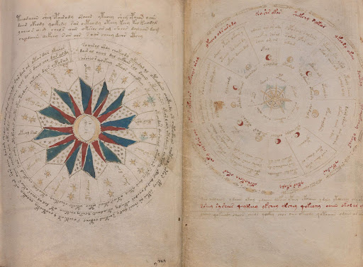 An image of one of the pages in the Voynich Manuscript - Credit: Sci-News.com