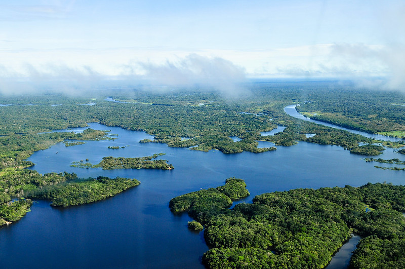 %22Amazon+Rainforest%22+by+CIFOR+is+licensed+under+CC+BY-NC-ND+2.0