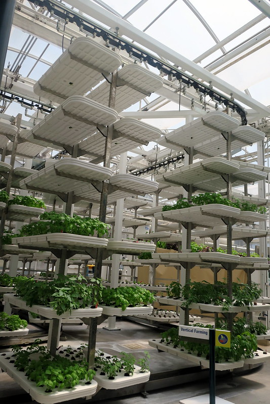 Disney World: Epcot - Living with the Land - Vertical Farming by wallyg is licensed under CC BY-NC-ND 2.0